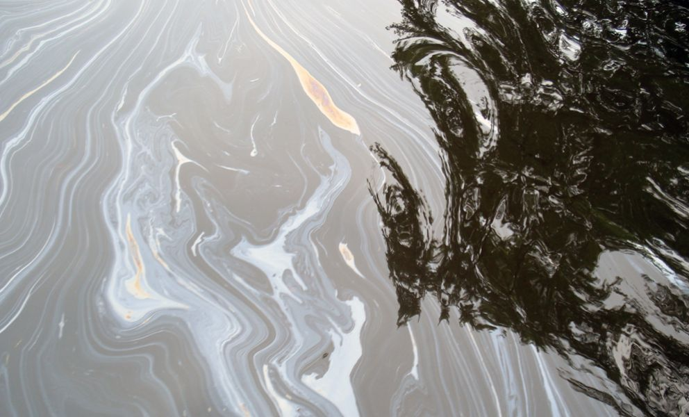 Oil sheen on water surface.