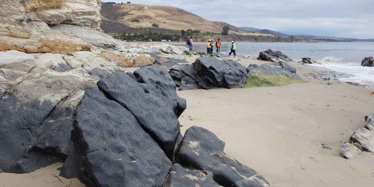 Oiled rocks on a beach.