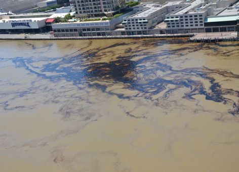Oil in water along an urban shoreline.