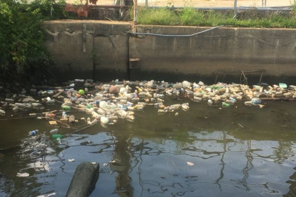 Plastic bottles and other debris in an urban waterbody.