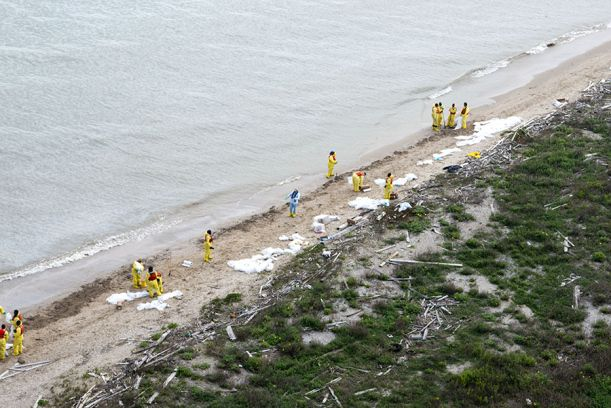 Aerial view of workers on beach.