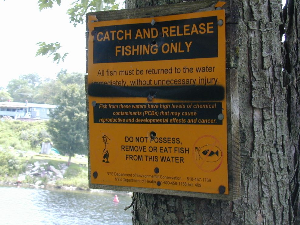 Sign indicating presence of PCBs in fish.