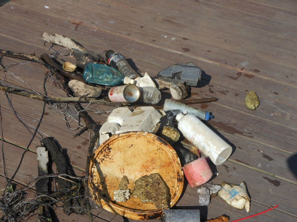 Image of marine debris on a Lake Erie dock.