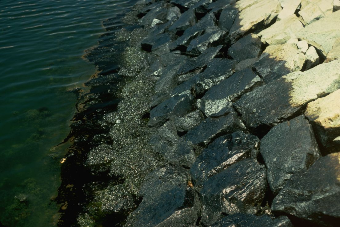 Rocks (riprap) at the water line that have been partially coated with oil.