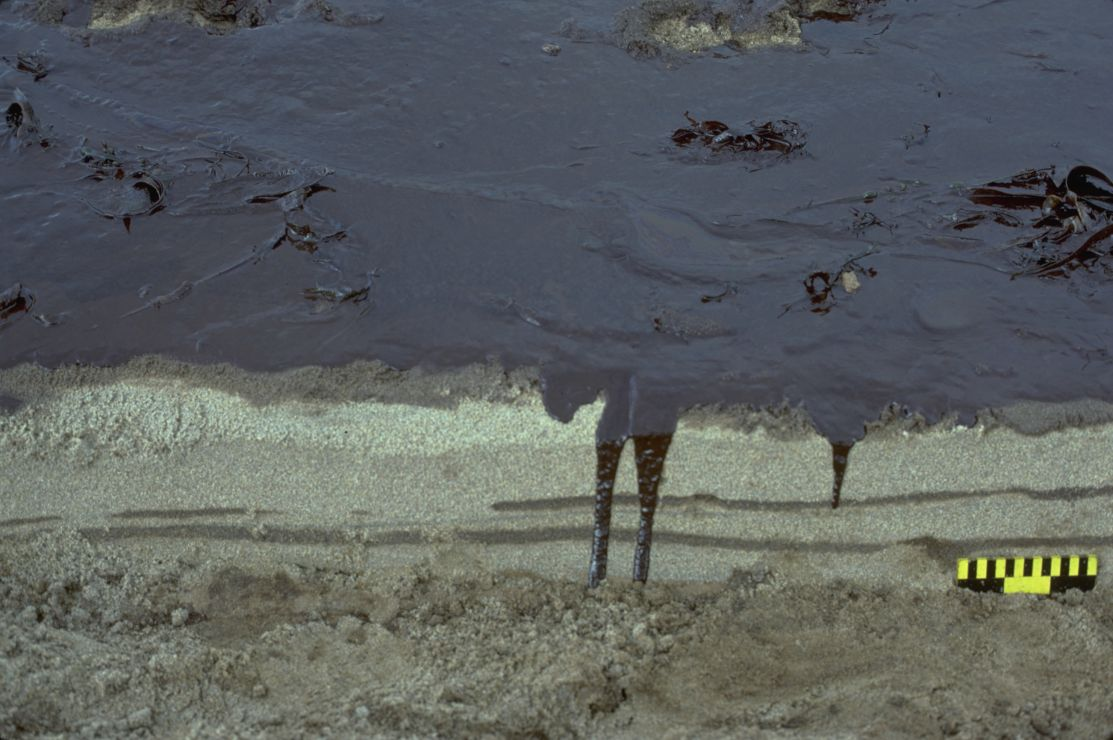 Photo showing a solid section of oil on sand.
