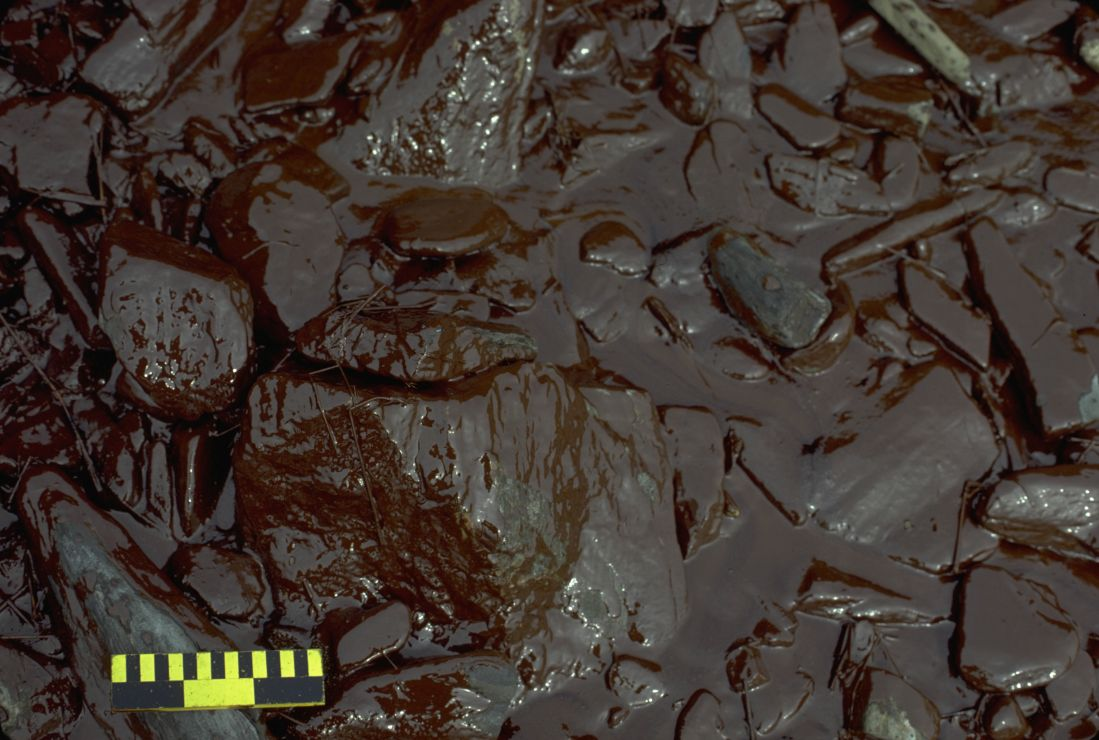 Photo: Large rocks thickly coated with brown oil.