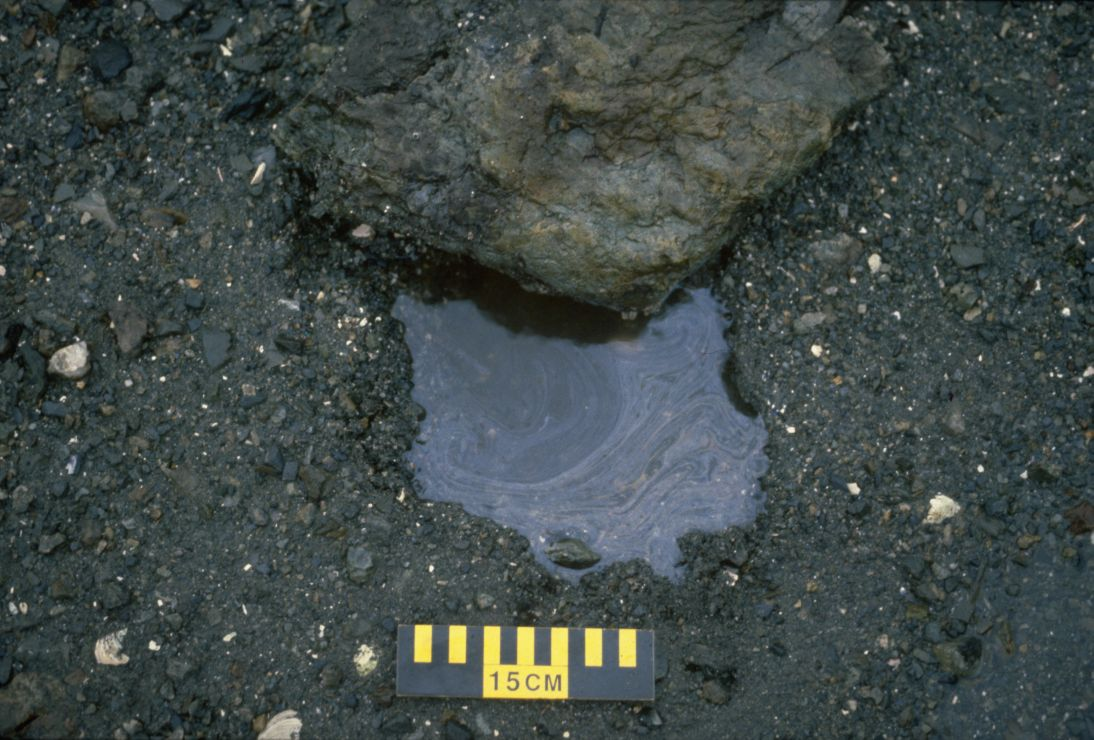 Photo showing a small pool of water with a thin layer of floating oil.