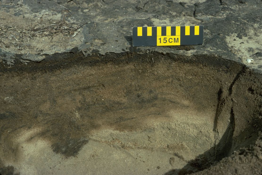 Trench cut in sand showing black oil, lightly-oiled sand, and sand with no oil.