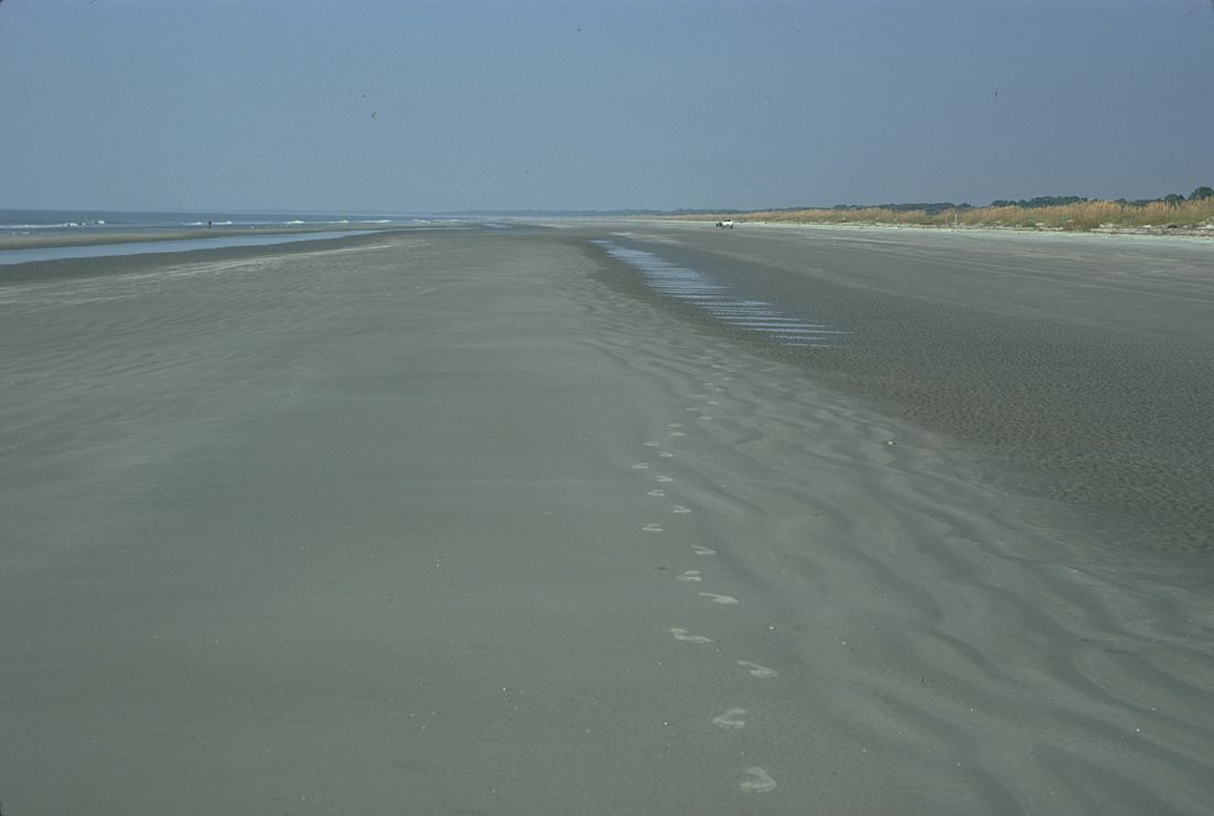 Photo: Footprints in fine sand.