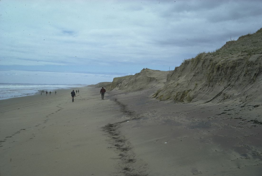 Photo: Walkers on sand beach.