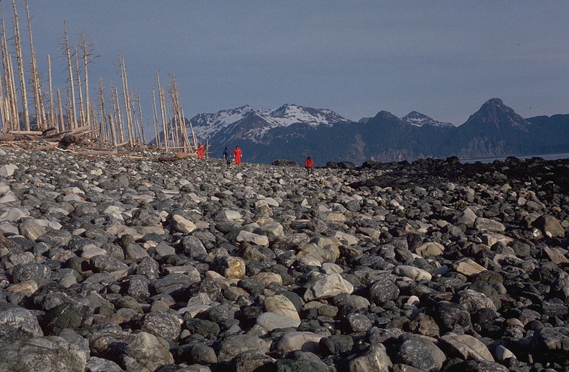 Photo: Walkers on gravel beach.