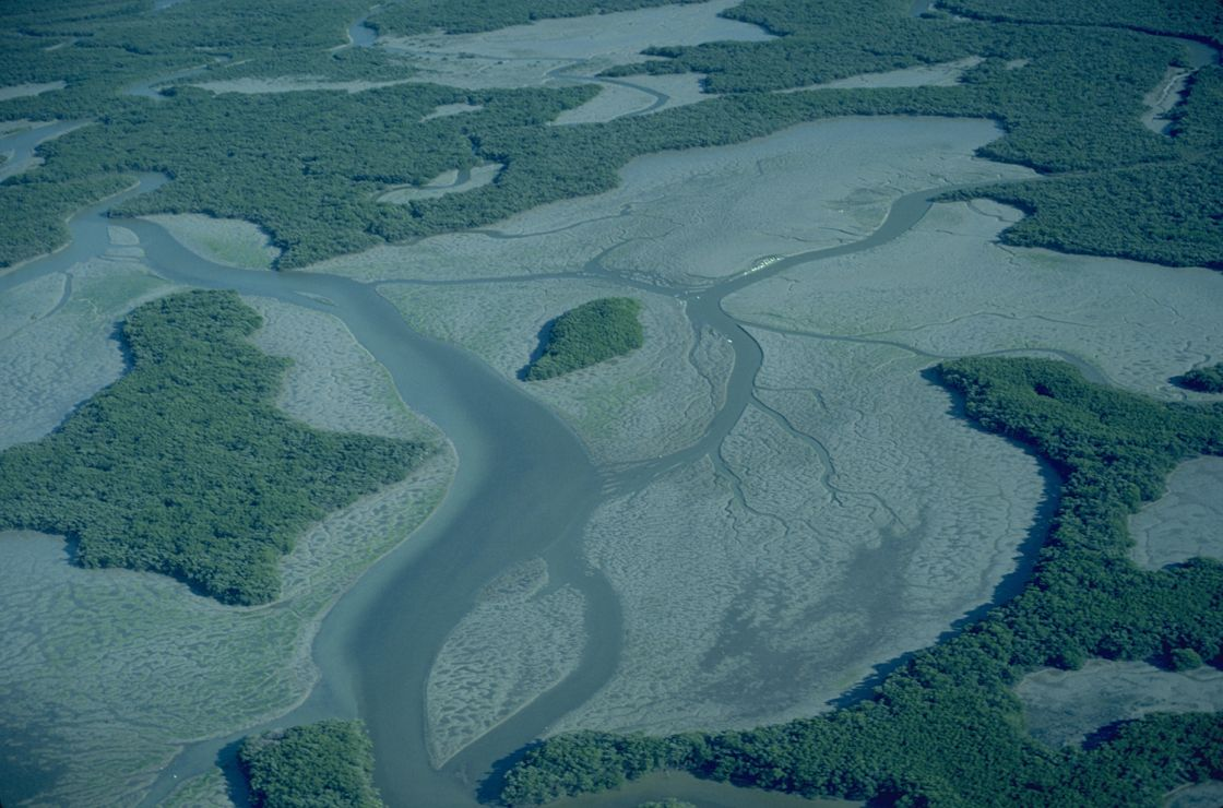 Photo: Aerial view of tidal flats.