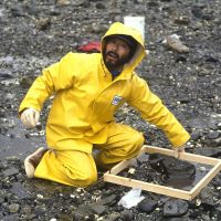 A man in yellow rain gear kneeling on a rocky shoreline.