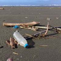 Debris laying on the sand; ocean in background.