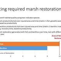 Graph and text on marsh restoration.