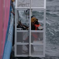 A diver being lowered into the water in a diving cage.