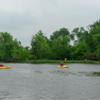 Two kayakers on a river with trees in the background.