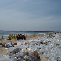 Bags of collected oil on a beach during cleanup operations.