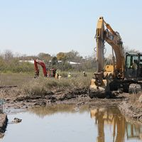 Heavy equipment and people working in a marshy area.
