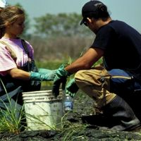 Two people working in a marshy area.