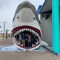 People standing in the mouth of a giant shark sculpture.