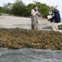 Three people standing in the water next to an oyster reef restoration project.