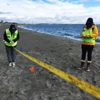 Two people measuring debris on a beach.