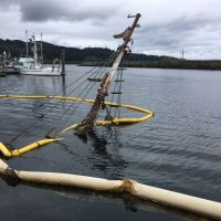 Mast of a vessel extending out of water with boom surrounding.
