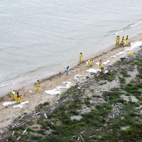 Workers cleaning a beach.