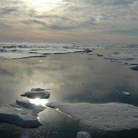 Arctic Ocean, Canada Basin, July 22, 2005.