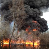 Smoke and fire from a controlled burn in a wooded Lousiania swamp.