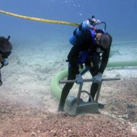Divers remove coral rubble from seafloor with a vacuum hose.