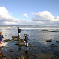 Family playing in tidepools in Santa Cruz, California.