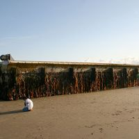 A 66-foot floating dock from Japan sits on Agate Beach, Oregon.