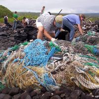 People cleaning up old fishing nets on a beach in Hawaii.