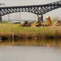 Heavy equipment removes dredge from a marsh restoration site.