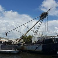 Derelict vessel with osprey nest on top of broken mast.