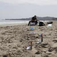 Scientist recording data on a beach with trowels and flags marking sampling site
