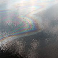Oil floating on water creating a sheen with multiple colors.