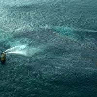 Response to a tug on fire in the Gulf of Mexico.