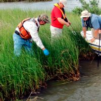 Photo: Assessing marsh damage in Louisiana.