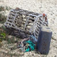 Derelict fishing gear debris in Hawaii.