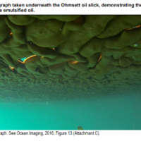 """An image of oil from below. The image is labeled """"Figure 3.20. Photograph taken underneath the Ohmsett oil slick, demonstrating the heterogeneity of the emulsified oil."""