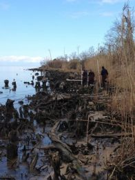 Shoreline Assessment at the Swift Tract Project Site