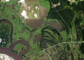 An aerial view of a marsh.