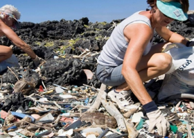 Two people gathering debris from a beach.