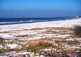 View of a beach.