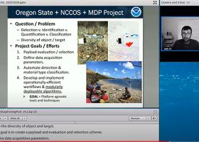 Screenshot of a virtual presentation.
