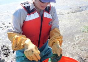 Woman with rubber gloves working with samples in a bucket.