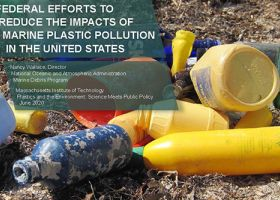 Slide showing text and photo of marine debris on a beach.